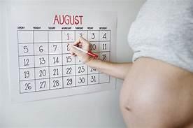 อยากมีลูก ต้องรู้วันไข่ตก !!-การตั้งครรภ์-ufoid