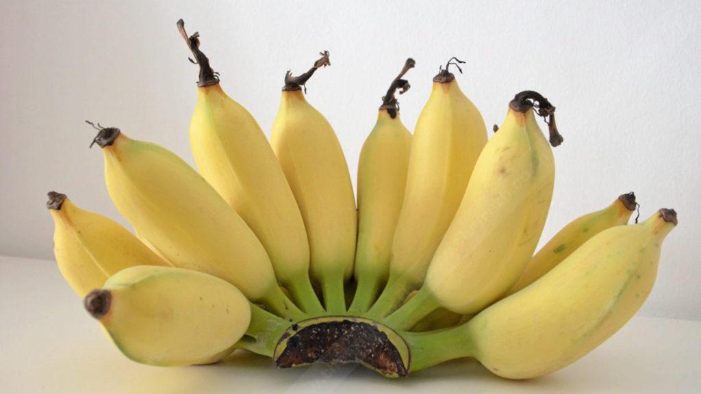 ผลไม้ที่คนท้องควรทาน-กล้วยมีสารอาหารมากมายดีต่อคุณแม่และลูกในท้อง
